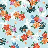 hibiscus repeats