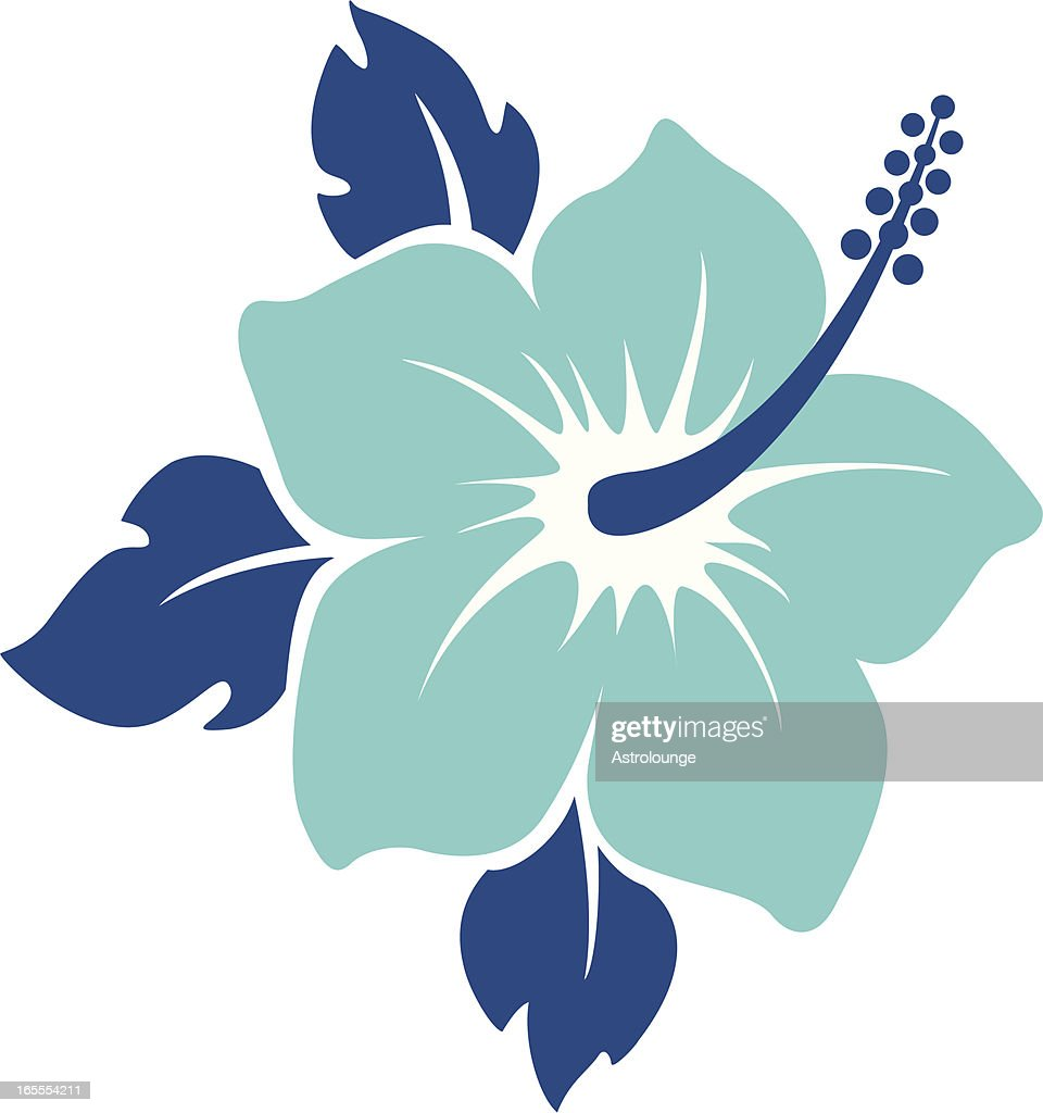 Tropical Flower Stock Illustrations And Cartoons Getty Images