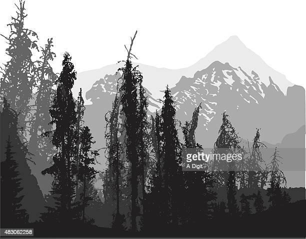 ilustraciones, imágenes clip art, dibujos animados e iconos de stock de altitud pines - incendio forestal
