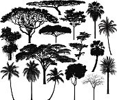 Highly Detailed Trees