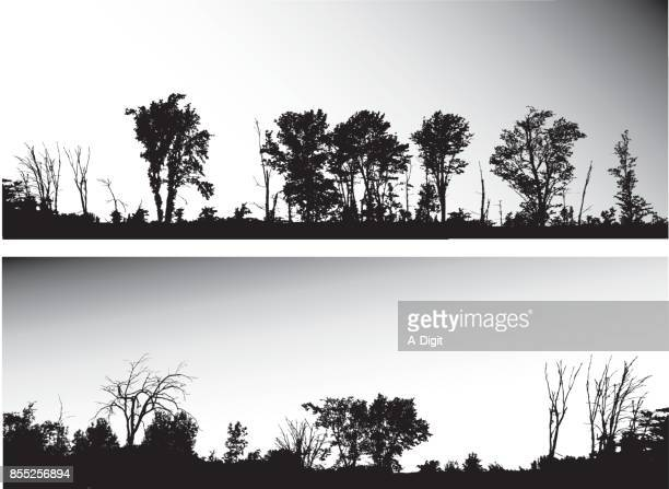 highway treeline - treelined stock illustrations, clip art, cartoons, & icons