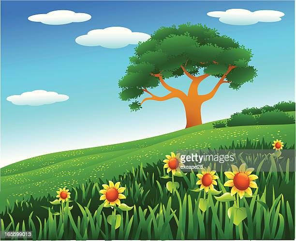 hillside - natural parkland stock illustrations, clip art, cartoons, & icons