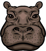 Hippo or african hippopotamus animal isolated icon