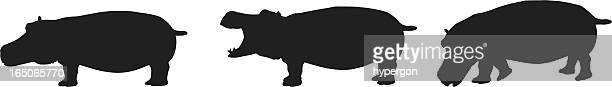 hippo silhouette collection - hippopotamus stock illustrations, clip art, cartoons, & icons