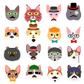 hipster cats faces set