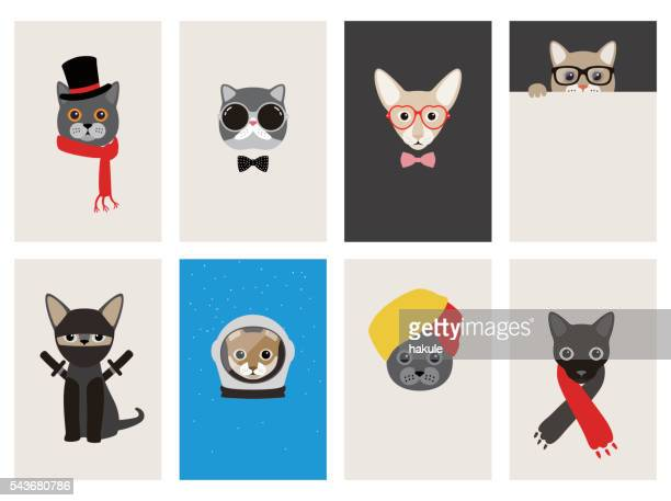 illustrations, cliparts, dessins animés et icônes de hipster, portrait of cat, gentlemen cat - chat humour