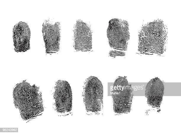 ilustraciones, imágenes clip art, dibujos animados e iconos de stock de dedo hiquality pista - huella dactilar