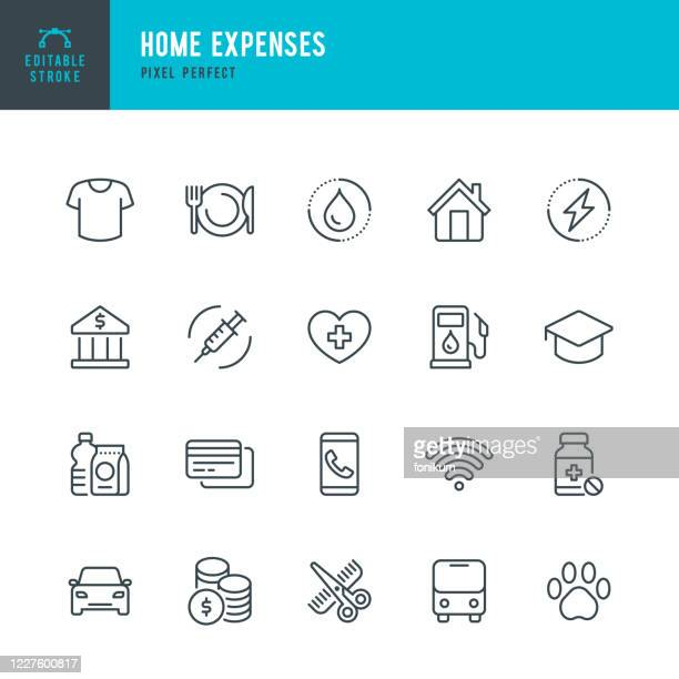 home expenses - thin line vector icon set. pixel perfect. the set contains icons: home finances, budget, credit card, medicine, electricity, clothing, hairdresser, internet. - beauty stock illustrations
