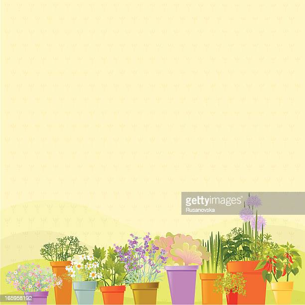 home garden background - gardening stock illustrations