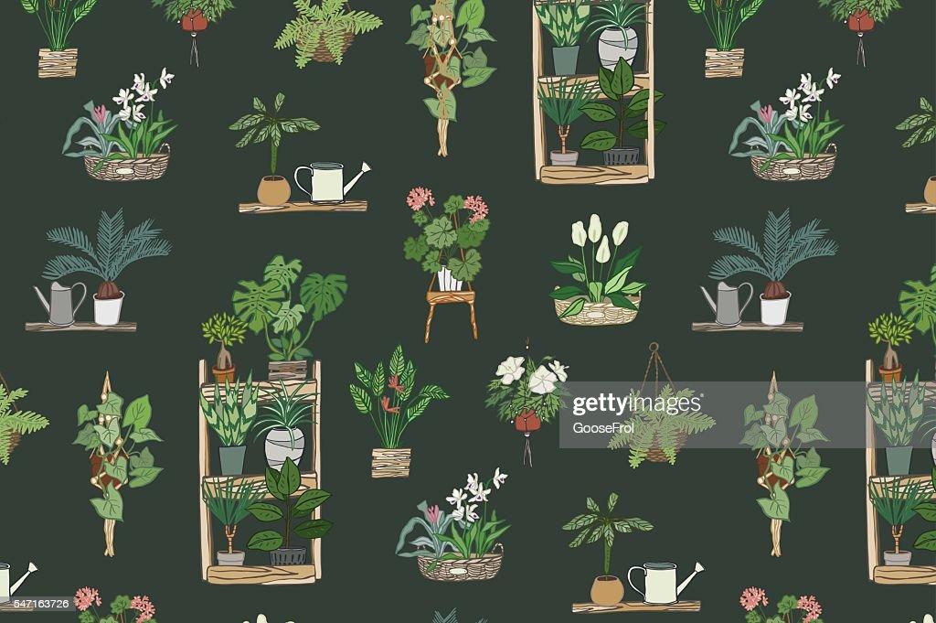 home plants pattern