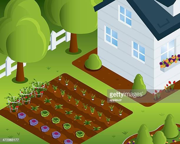 ilustrações, clipart, desenhos animados e ícones de casa de horta - flowerbed