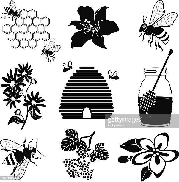 Miel y abejas con Colmena grupo de iconos