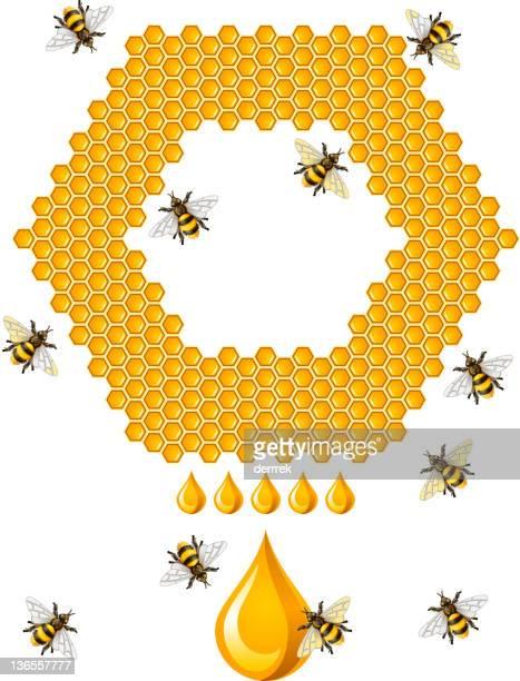 honey bee - queen bee stock illustrations