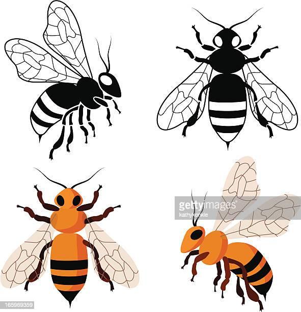 Miel bees