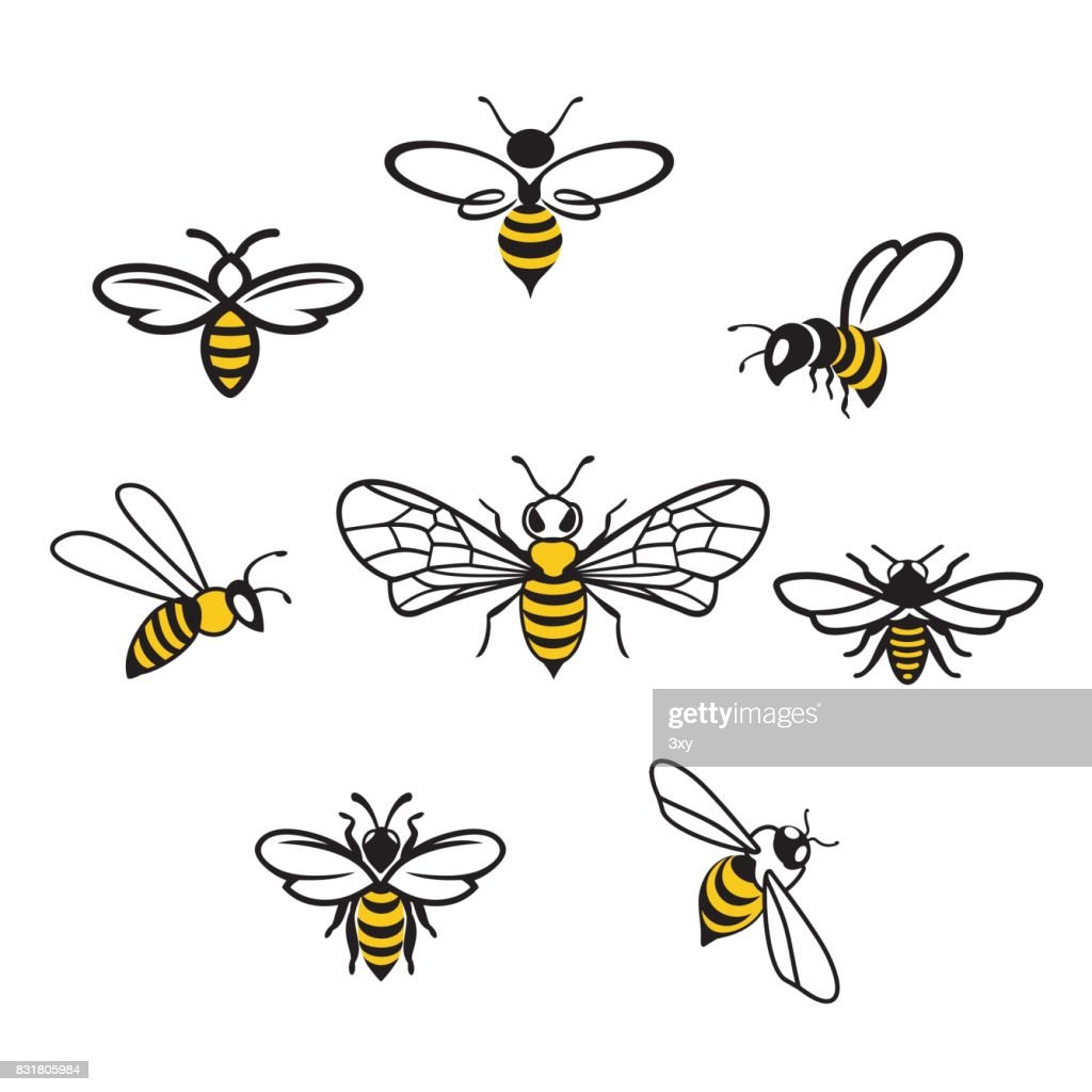 Honey Icons3