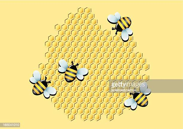 honeycomb - bumblebee stock illustrations, clip art, cartoons, & icons
