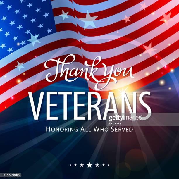 ilustrações, clipart, desenhos animados e ícones de homenageando veteranos - política e governo