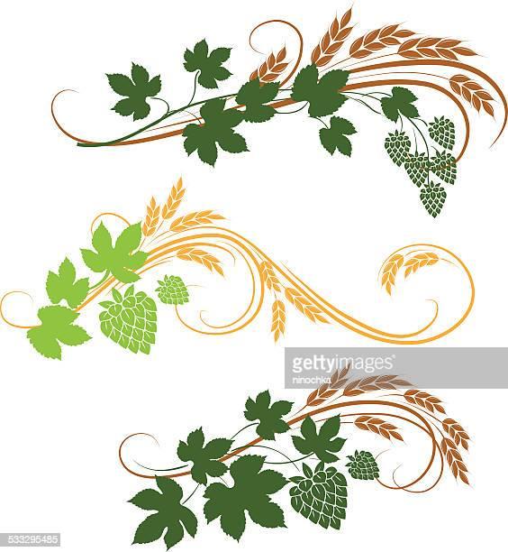 hop ornaments - barley stock illustrations, clip art, cartoons, & icons