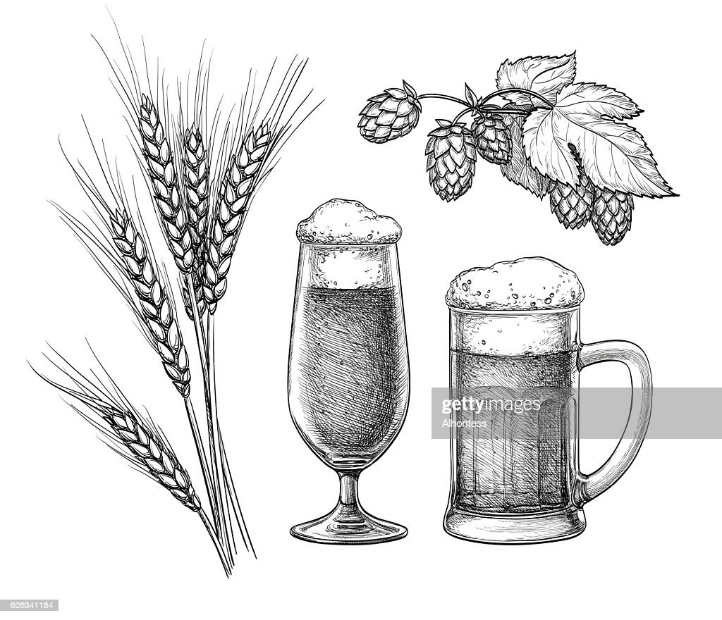 Hops, malt, beer glass and beer mug