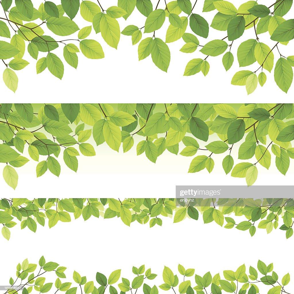 水平の葉のバックグラウンド : ストックイラストレーション