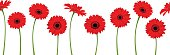 Horizontal seamless background with red gerbera flowers. Vector illustration.