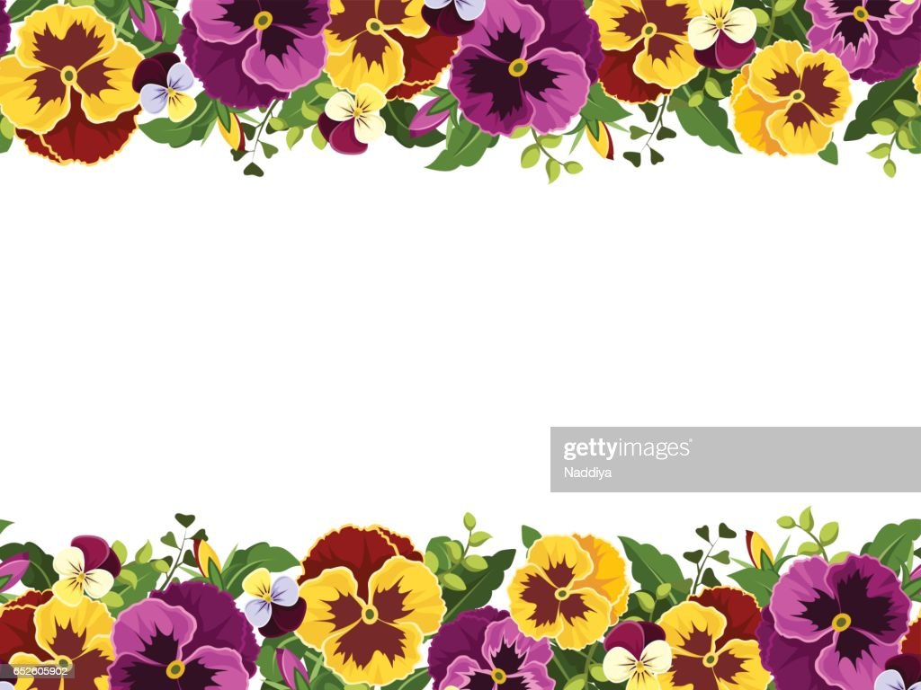 Horizontal seamless frame with pansy flowers. Vector illustration.