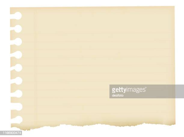 a horizontal vector illustration of a lined off white colored ripped page from a spiral notepad - papyrus paper stock illustrations