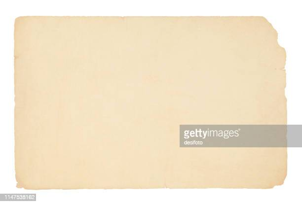 a horizontal vector illustration of a plain blank beige colored old paper - archival stock illustrations