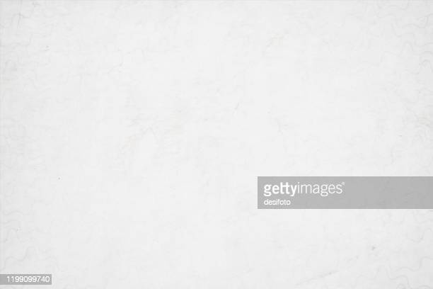 illustrazioni stock, clip art, cartoni animati e icone di tendenza di a horizontal vector illustration of a plain grunge effect blank white colored old blotched background - texture descrizione generale