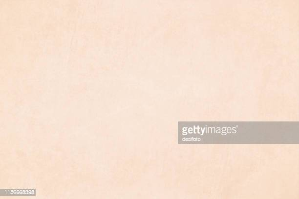 horizontal vector illustration of an empty light brown colored grungy textured background - beige stock illustrations