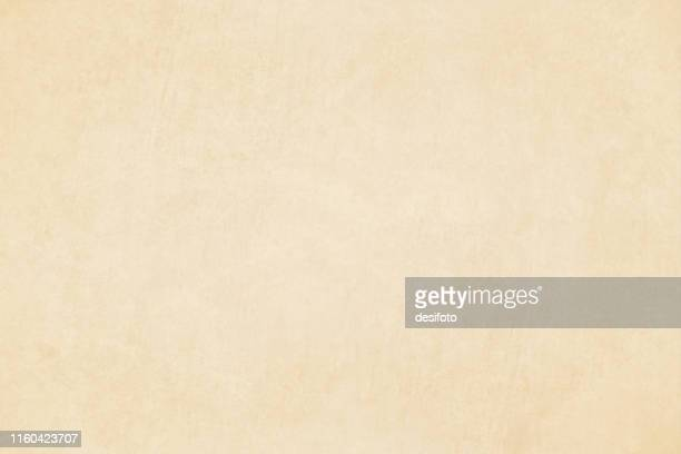 horizontal vector illustration of an empty light brown shade grungy textured background - beige stock illustrations