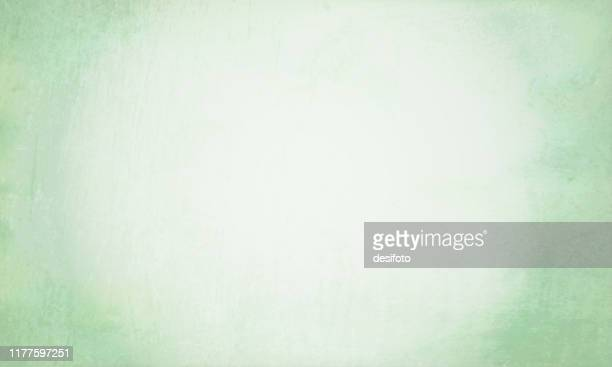 horizontal vector illustration of an empty light green pale colored grungy textured stock background - papyrus paper stock illustrations