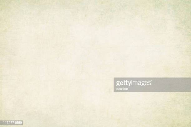 horizontal vector illustration of an empty light green pale grey colored grungy textured stock background - cream colored stock illustrations
