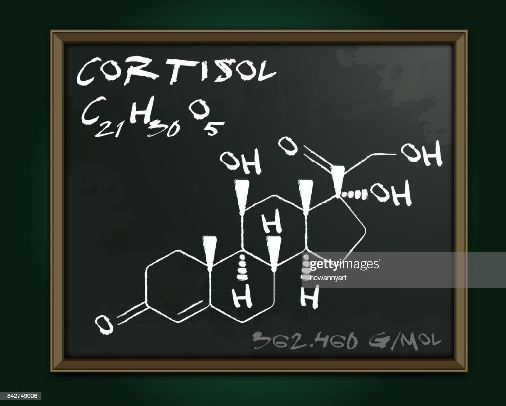 Hormones Molecule Blackboard