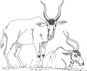 Horned antelope. The sketch marker. Vector