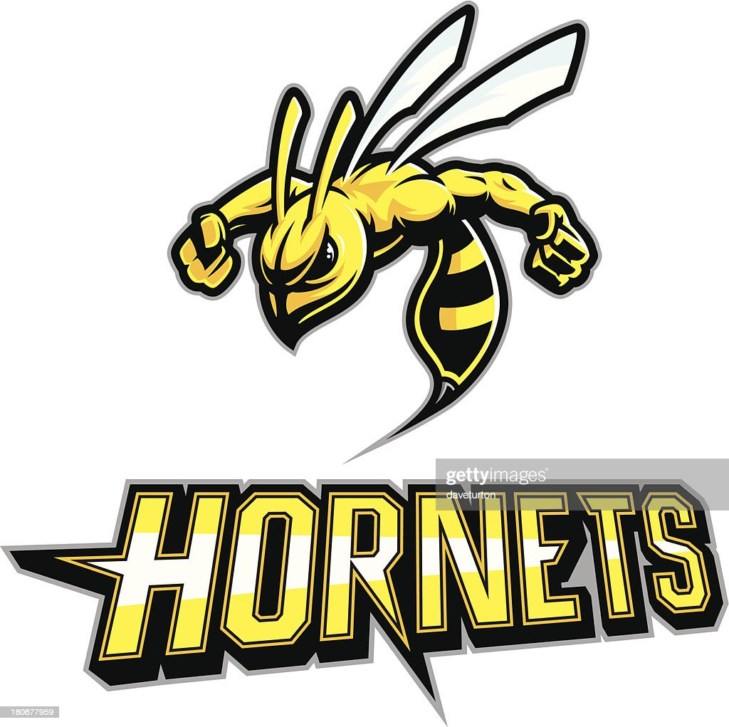 Hornet Mascot Arms out : stock illustration