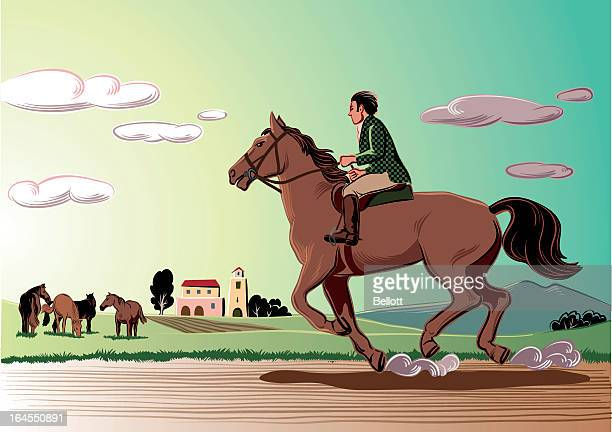 horse and rider in landscape - horseback riding stock illustrations, clip art, cartoons, & icons