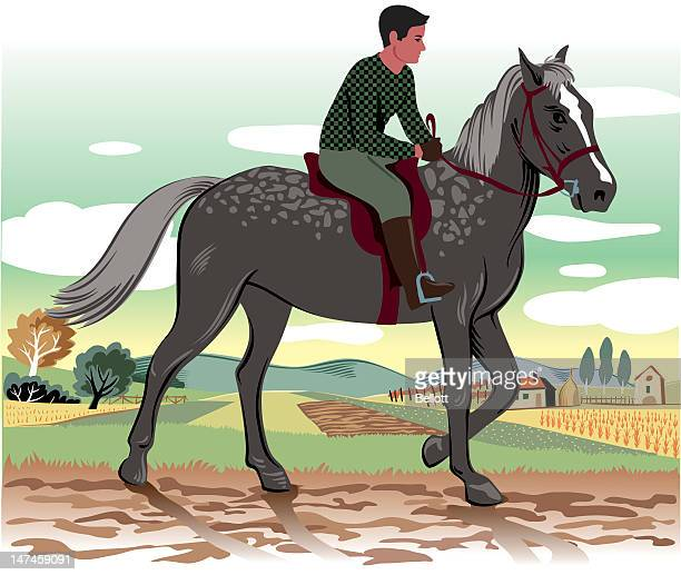 horse and rider - cavalier cavalry stock illustrations, clip art, cartoons, & icons