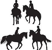 Horse equestrian