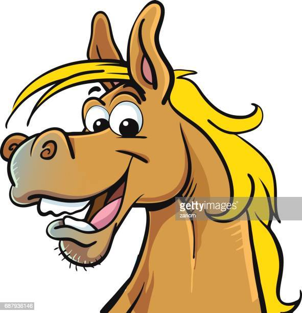 60 top funny horses stock illustrations clip art cartoons icons getty images - Clipart cheval ...