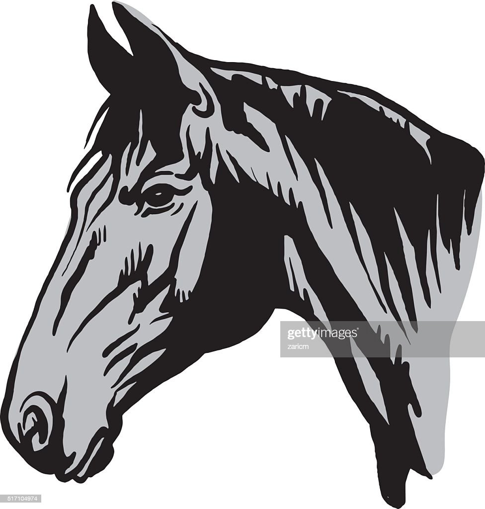 Horse Head High Res Vector Graphic Getty Images