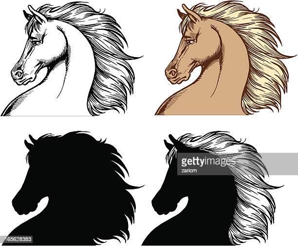 horse heads - animal mane stock illustrations, clip art, cartoons, & icons
