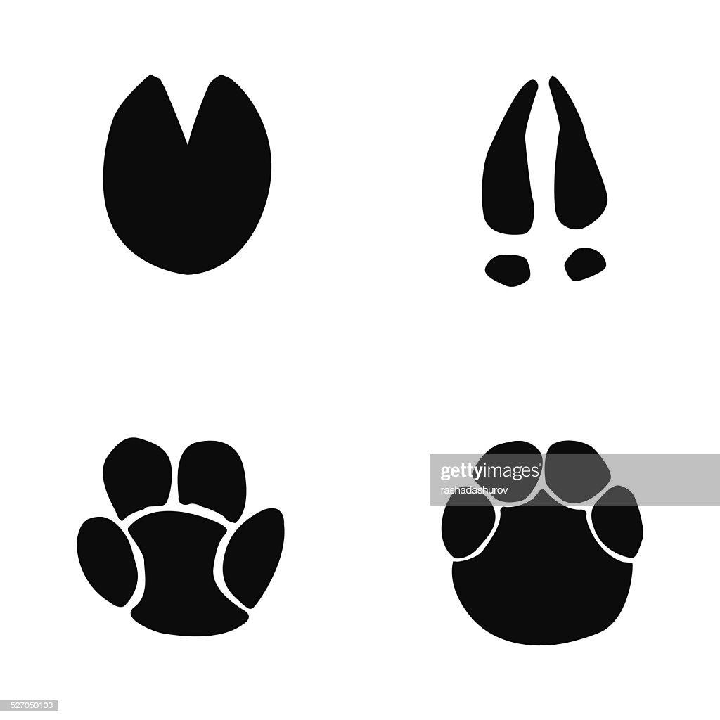 horse, hippopotamus, deer, elephant footprint