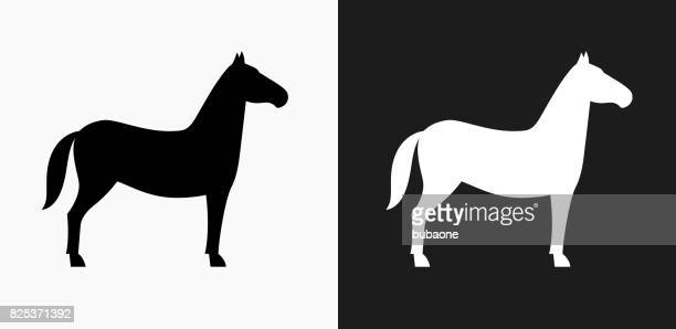 Horse Icon on Black and White Vector Backgrounds