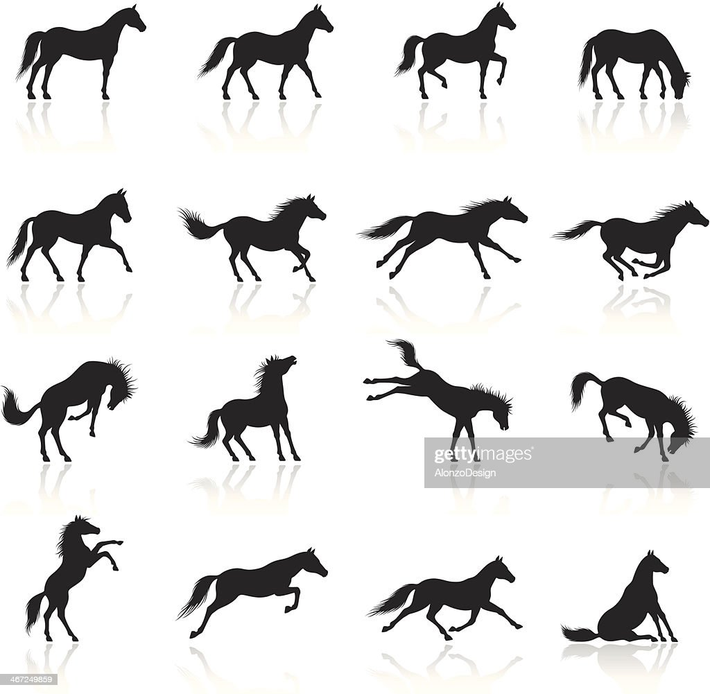 Icono de caballos : Ilustración de stock
