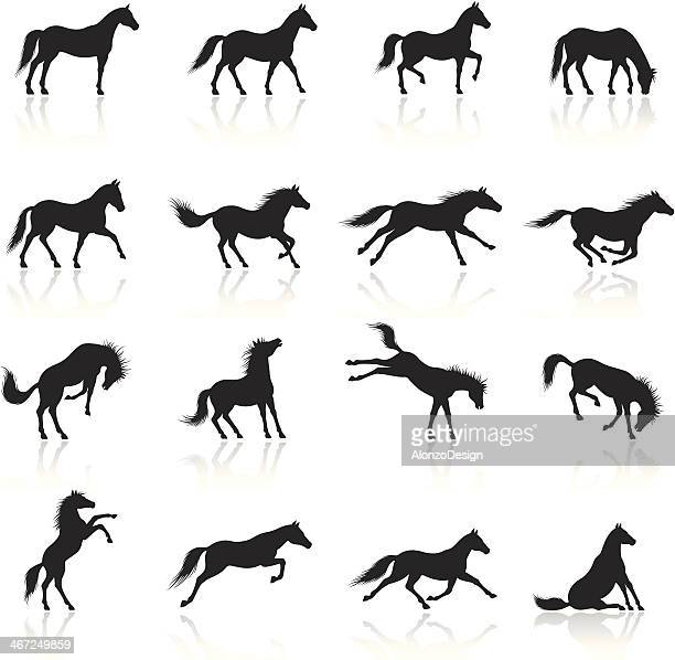 horse icon set - horse stock illustrations