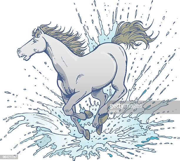 horse in water - horse family stock illustrations, clip art, cartoons, & icons