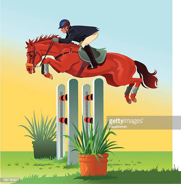 horse jumping over the hurdle - horse family stock illustrations, clip art, cartoons, & icons