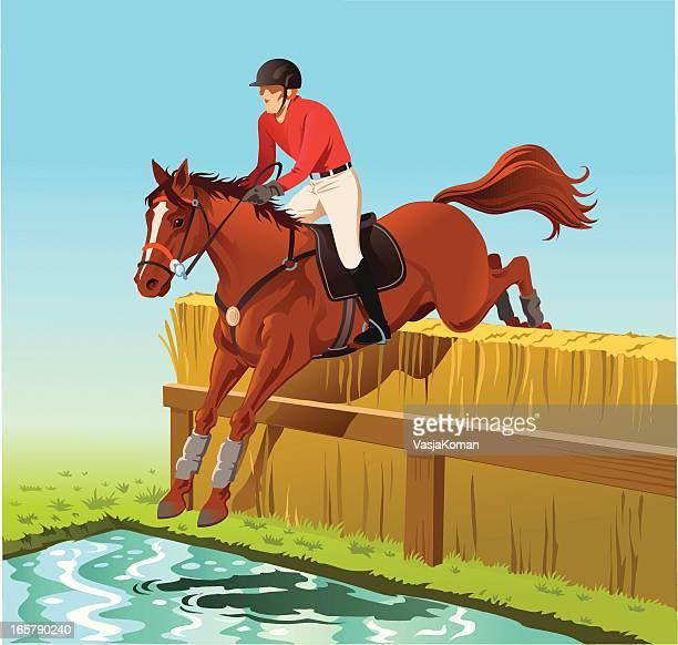 horse jumping over the water hurdle - horseback riding stock illustrations, clip art, cartoons, & icons