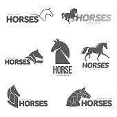 Horse profile graphic template